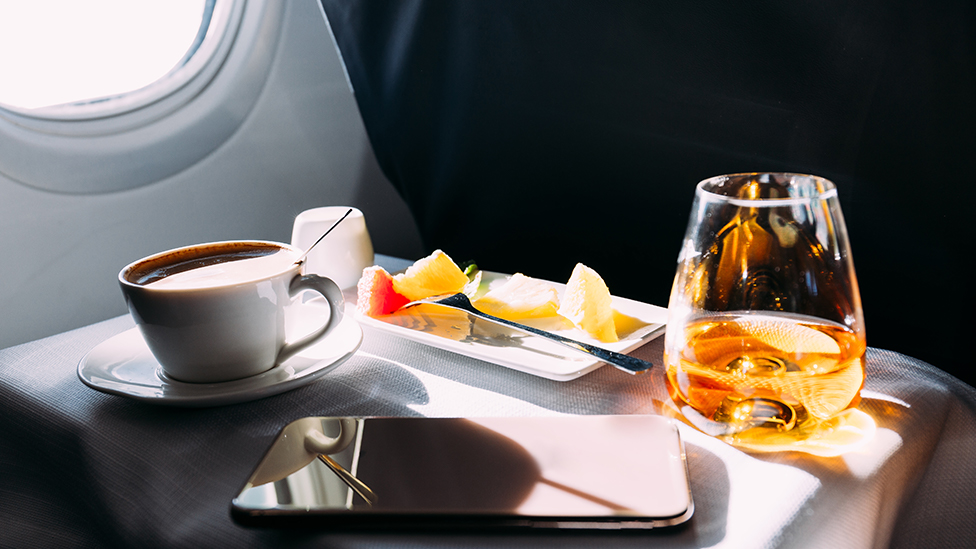 Japan's biggest airline is offering first-class dining on a parked plane at AUD$720 a meal.